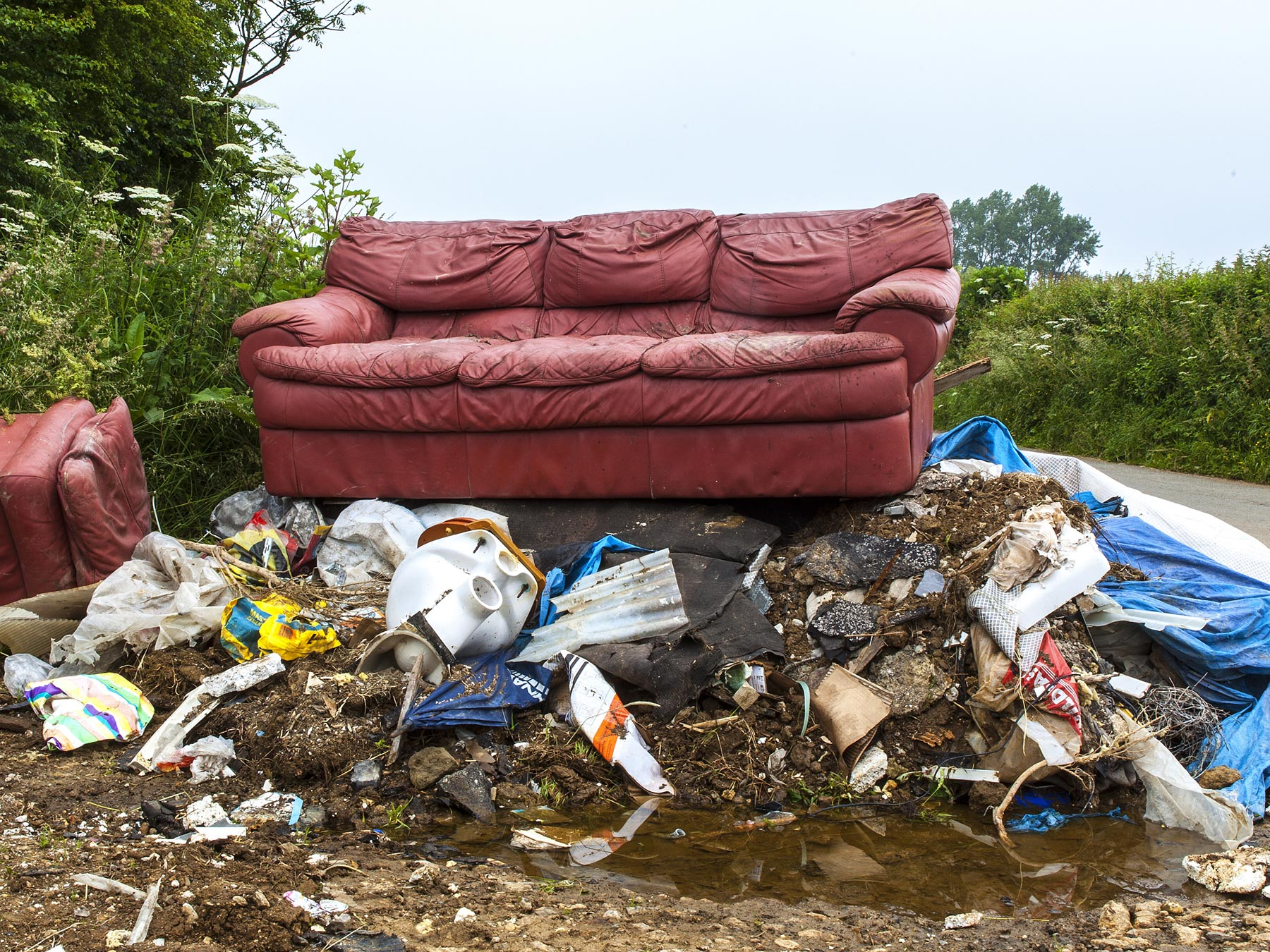 Illegal Dumping Facts and the Consequences of Carelessness