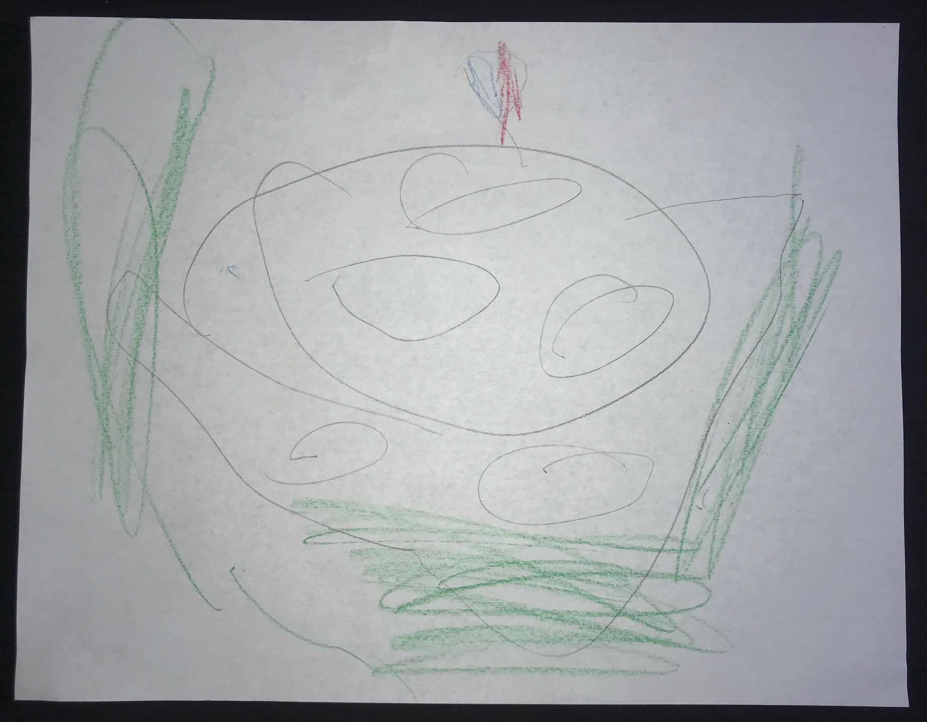 White House Kids Drawing 1
