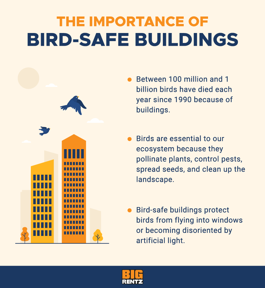 the importance of bird-safe buildings